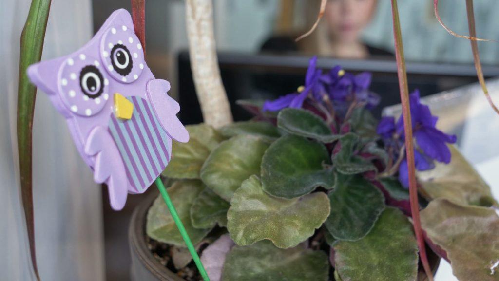 Owl decor in a plant